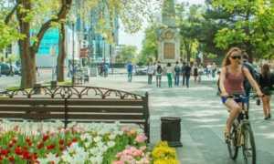 Куда лучше переезжать на ПМЖ в Краснодарский край