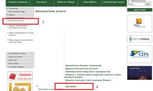 Заполнение анкеты для получения визы на Кипр