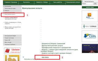 Оформление провизы на Кипр на сайте посольства