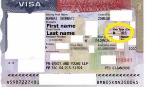 Получение рабочей визы H1B в США