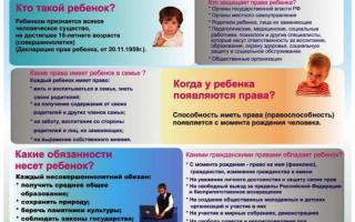Основные права несовершеннолетних детей в России