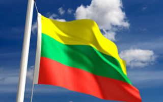 Оформление мультивизы в Литву