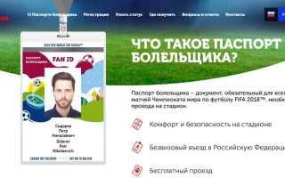 Оформление и получение паспорта болельщика на Чемпионат мира по футболу 2020