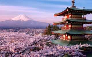 Оформление страховки в Японию