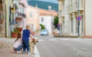Оформление визы в Италию для детей