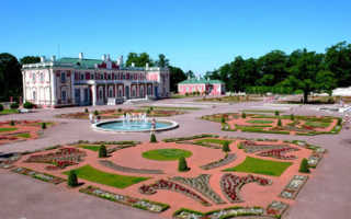 Оформление и получение визы в Эстонию через визовый центр