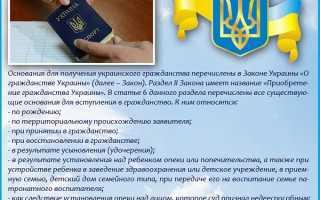 Оформление и получение гражданства Украины для россиян
