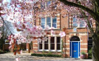 Обучение в колледже в Англии