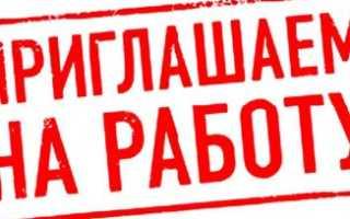 Работа в России для граждан ДНР и ЛНР